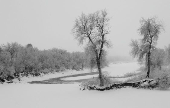 The James river in South Dakota on a frosty and foggy winter morning.