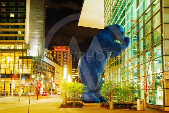 Colorado Convention Center at night time