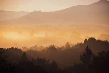scenery of a beautiful sunrise in the mist
