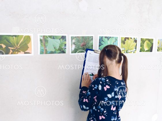 Little girl recognizes tree species on the basis of...