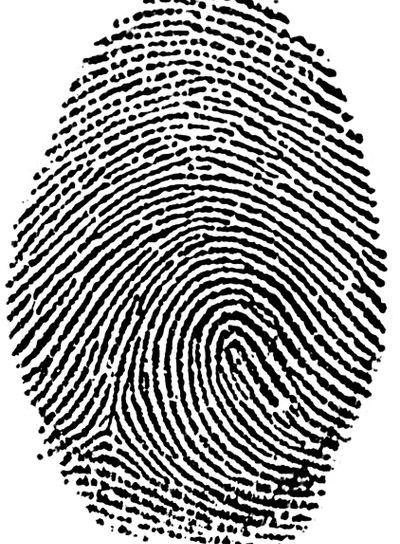 Fingerprint - My