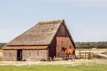 Traditional sheep barn Texel in the Netherlands