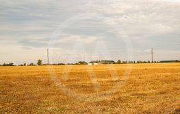 Farm field after harvest in the fall.