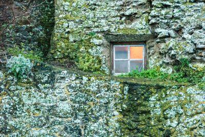 Burgmauer mit Fenster