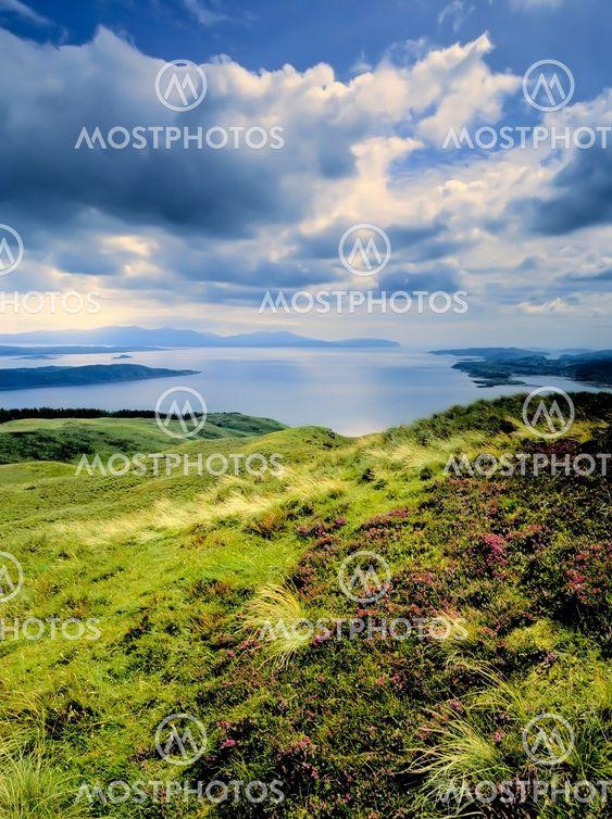 skotsk højland
