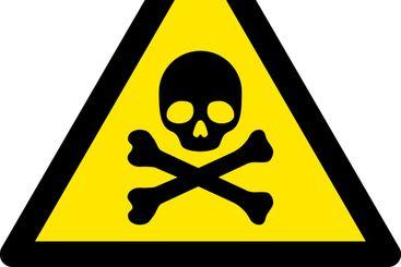 Vector Flat Death Skull Warning Icon