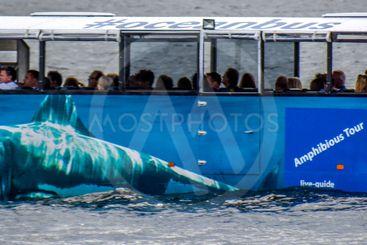 ocean bus