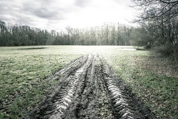 Large wheel tracks in the mud on a green field