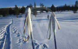 Skidor i svenska fjällen