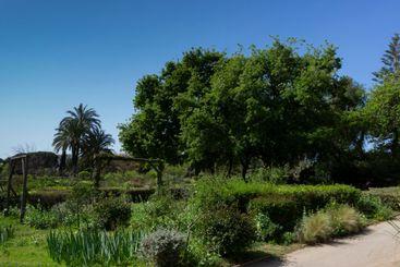 Urban flower park in Barcelona