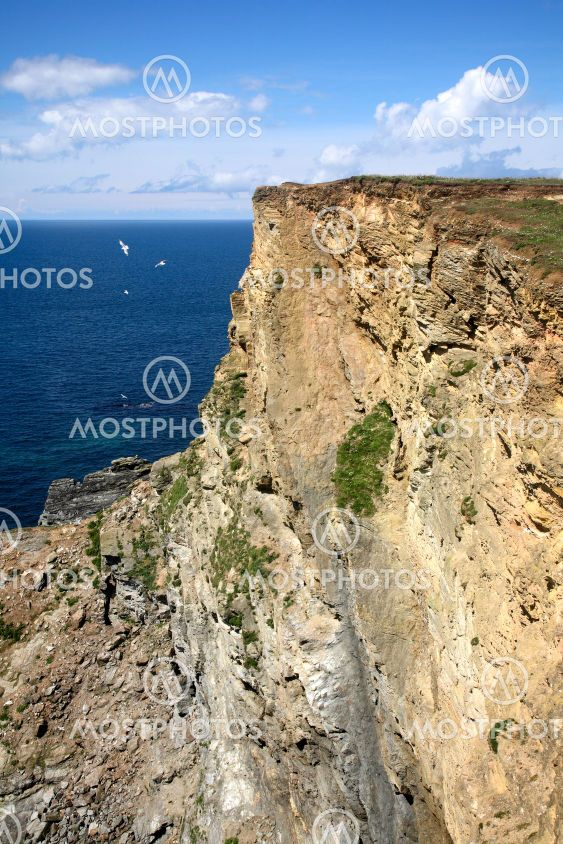 A large cliff face at Western Cove near Portreath,...