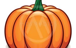 Vector pumpkin on white background