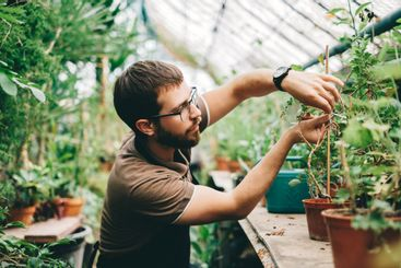 Young man gardener environmentalist caring for plants in...