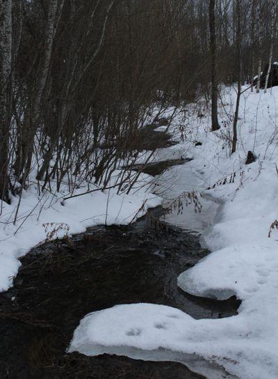 creek, ditch, deep, beach, water, winter, snow, trees