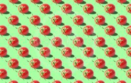 Vivid fresh vegetables pattern on colourful background