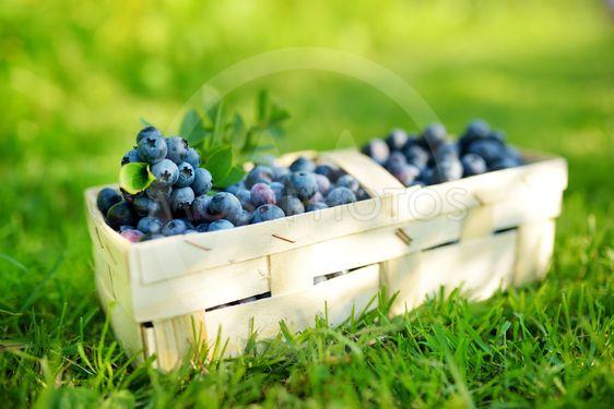 Fresh ripe blueberries in cute wooden basket on a grass...