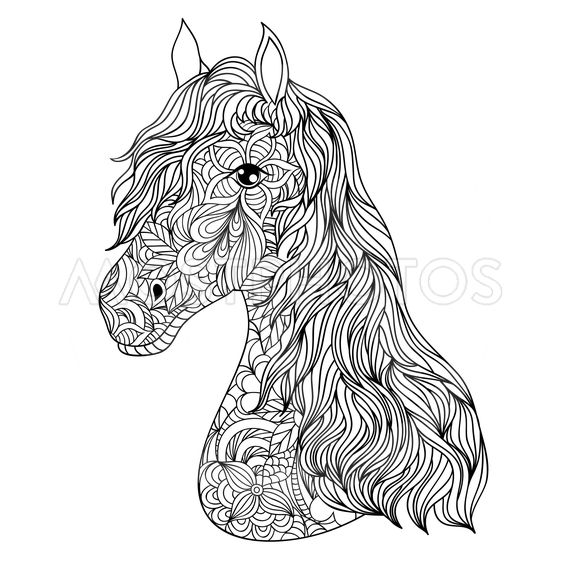hand drawn  horse on white background.