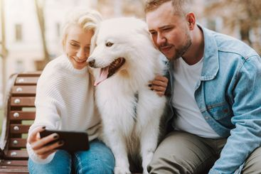 Lovers resting on bench with dog, making photo of...