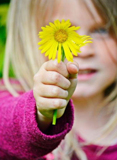 Barn plockar blommor