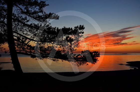 Nordic midsummer night by the sea