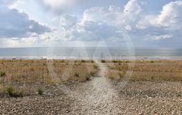 Mot stranden vid Neptuni åkrar på Öland