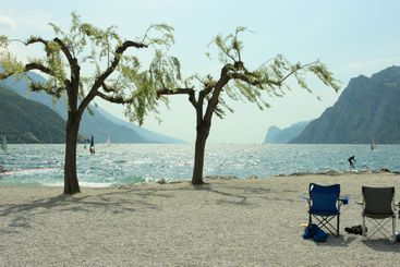Chairs, trees, and surfers