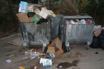 Overfull garbage bins