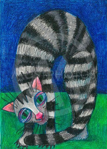 domestic animals. tabby cat