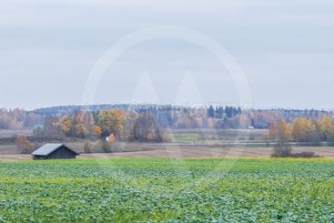 Jordbruksbygd - panorama