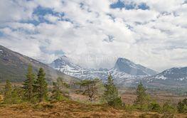 highmoor Vaksvikfjellet