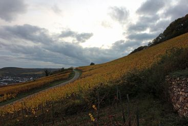 Bad weather above vineyards in Rüdesheim in Germany