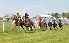 Tough fight between many jockeys riding arabian race...