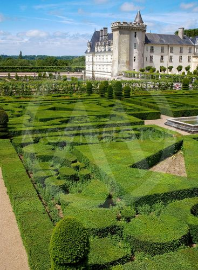 jardins et chateau de villandry, touraine, france