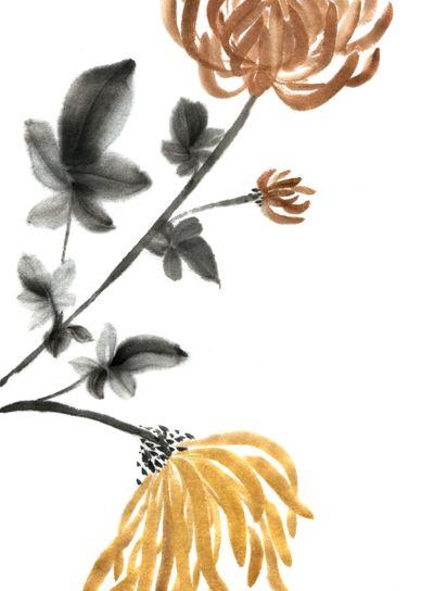 Sumie chrysanthemums