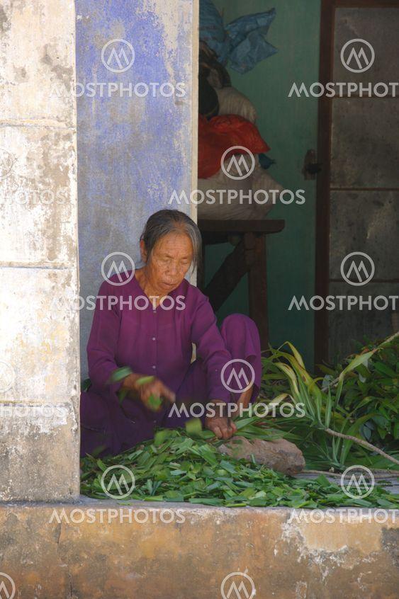 Medical herb preparation