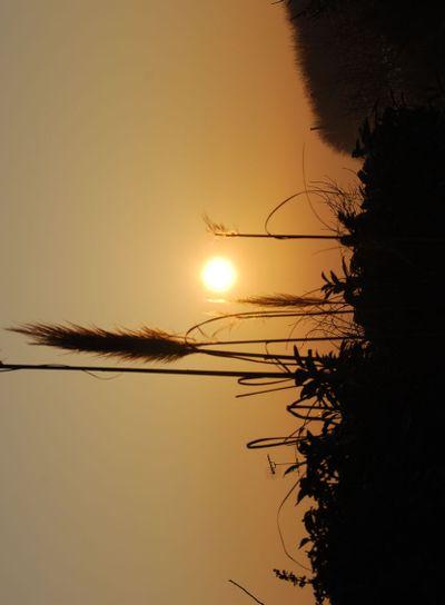 The sunrise 2