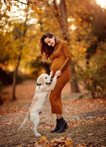 pregnant woman plays with dog in autumn Park.