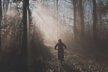 MTB or mountain biker riding up in misty forest with sun...
