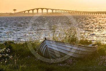 Solnedgång med en gammal eka med Ölandsbron i bakgrunden