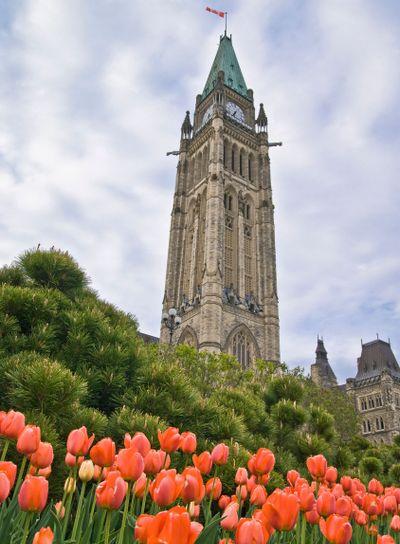 Springtime Parliament
