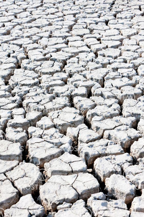 tør jord, Parc regionale de Camargue, Provence, Frankrig