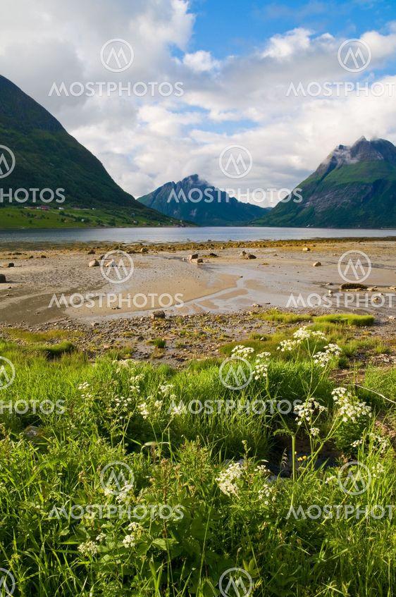 norweigian fjord