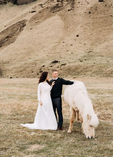 A wedding couple and a cream-colored horse with a chic...