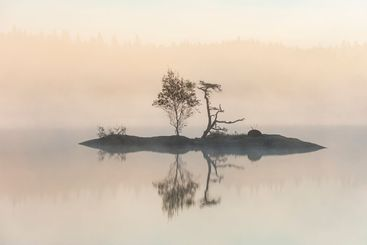 Island with trees at misty and still lake
