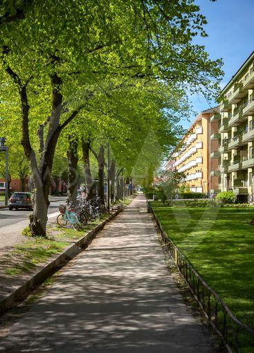 Grönskande Uppsala