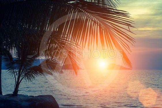 Sunset on the tropical Sea coast.