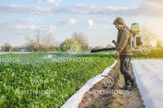 A farmer with a mist sprayer sprays fungicide and...