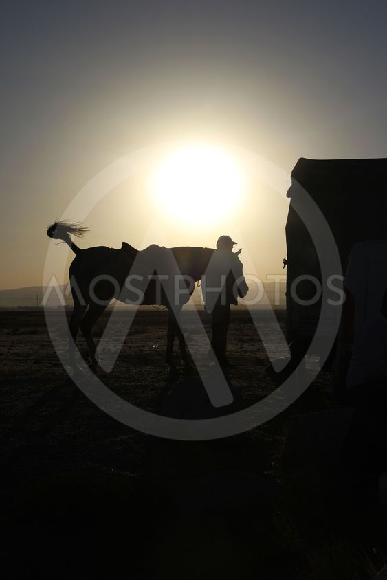horse owner and sunset