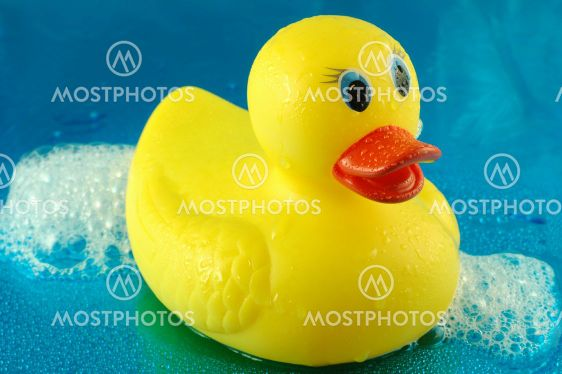 Rubber Duck in Bubbles