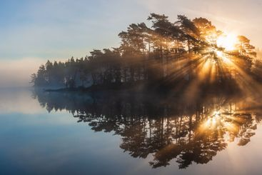 Stunning sunrise through trees and reflected on still lake